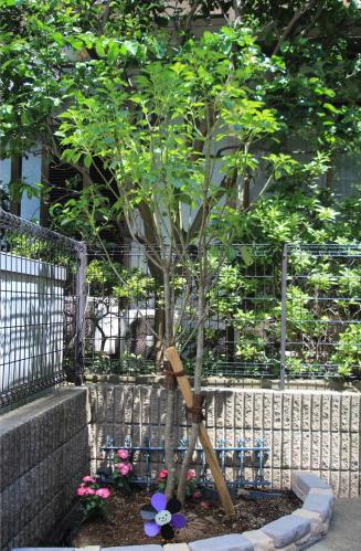 千葉市稲毛区。<br>ボタニカルなアイアン扉で玄関リフォーム。16