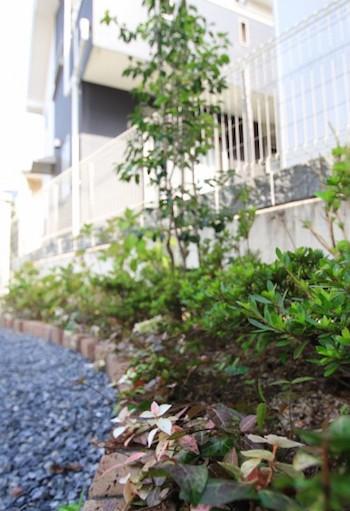 ガゼボのあるお庭<br>千葉市K様邸11