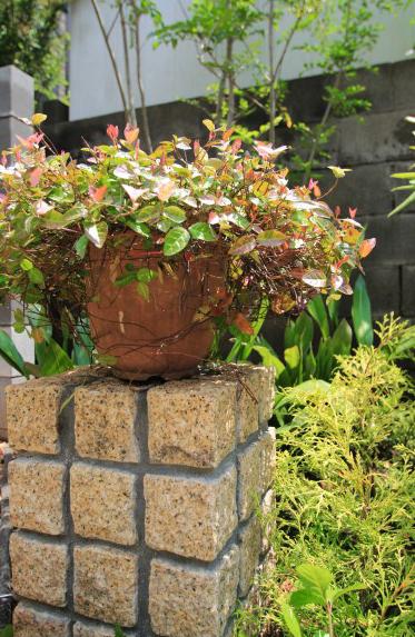 植栽の中に散らしたストーンが素敵なナチュラルガーデン。10