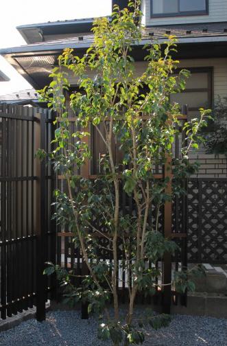 千葉市稲毛区。<br>シックなタイルテラスのアプローチ。9