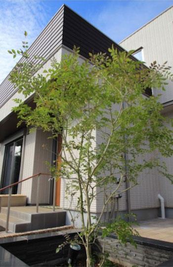 水平線を基調に石畳のアプローチとガラスブロックの素敵なハーモニー。千葉市。11