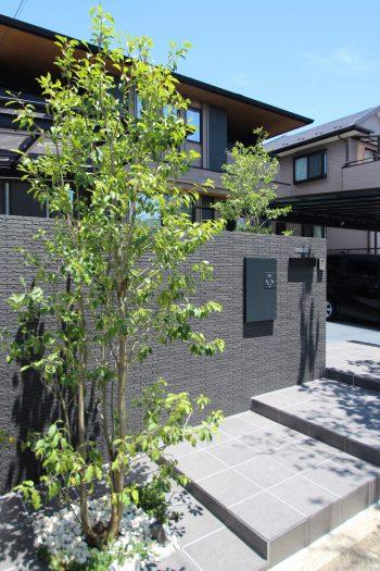 千葉市。<br>細割タイルのきれいめベーシック。<br>清涼にまとう初夏グリーン。6