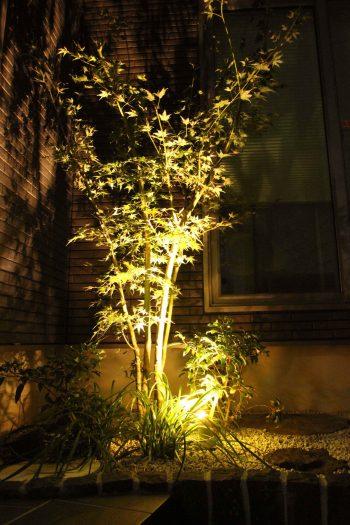 千葉県 <br>秋の気配に誘われた贅沢なひと時。<br>最旬な上質素材でしなやかに。36