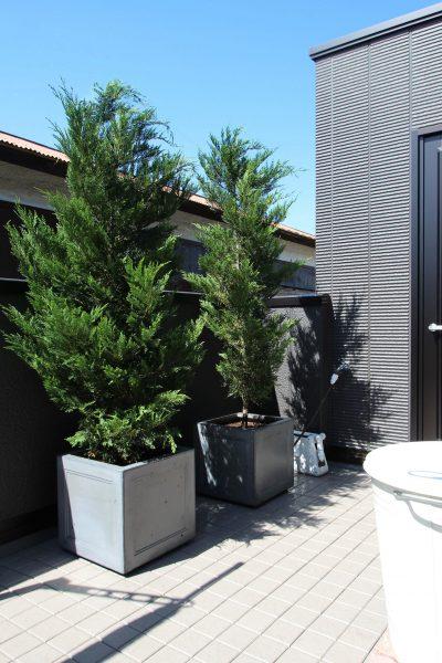 千葉市。<br>モダンな黒を流線美で紡ぐ。<br>ブラックの艶めきに映えるグリーン。16